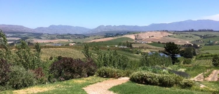 View of Elgin Valley from Charles Fox cellar door photo