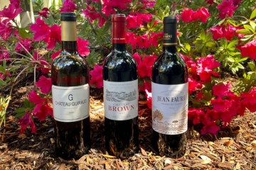 Bordeaux sustainability featured photo