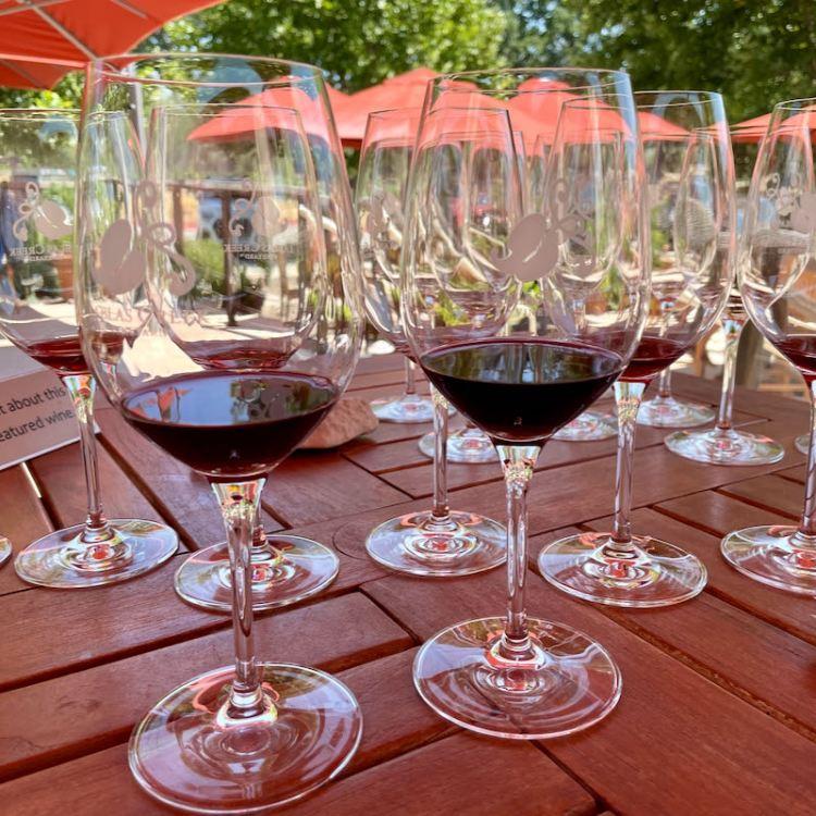 So many wines to taste photo