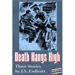 Death Hangs High by J.S. Endicott