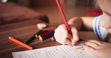 Why You Should Allow Your Children To Use Essay Service