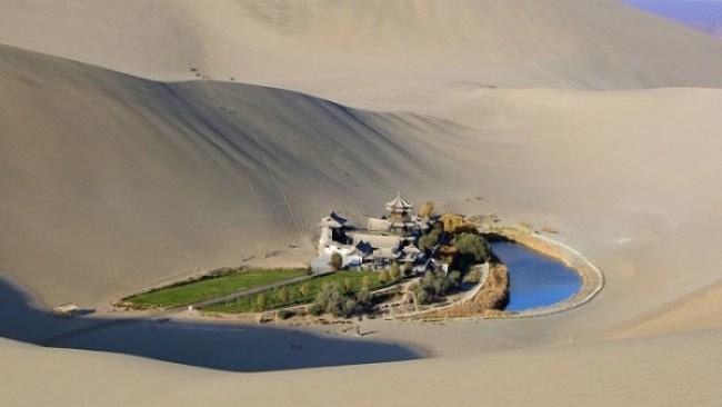 7. An oasis in the Gobi Desert.