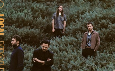 Download This: Violet Street by Local Natives