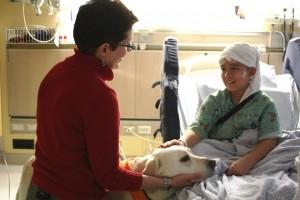 Pet Therapy - Joey web version