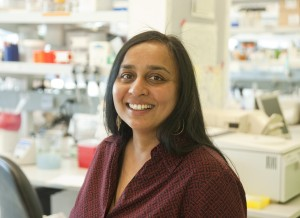 Dr. Lakshmi Rajagopal is trying to better understand the common bacteria Group B Streptococcus and how infections occur before birth.