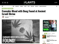 https://plantsbeforepills.com/cannabis-mixed-with-dung/