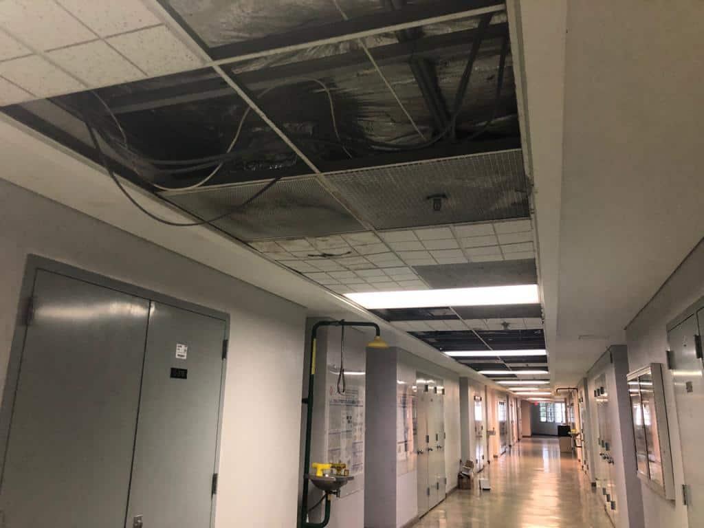 Colegiales responden al deterioro del edificio del Departamento de Química
