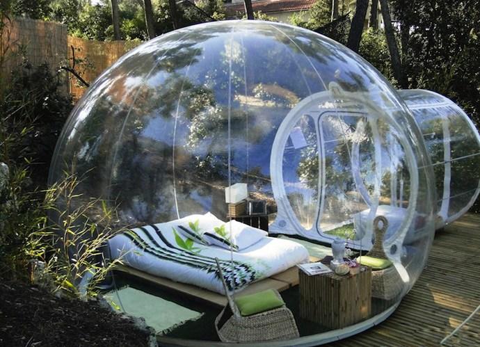 Прозрачный, надувной дом Bubble Tree (4)