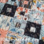 Emersyn's Quilt Detail 2