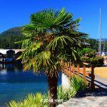 Madeira Park Sunshine Coast BC