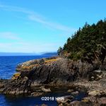 Near Sheringham Point Lighthouse Vancouver Island BC