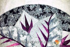 Poinsettia Detail 2