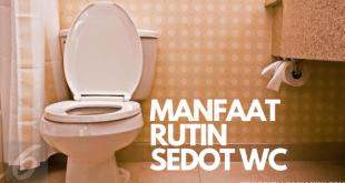 Manfaat rutin melakukan sedot wc