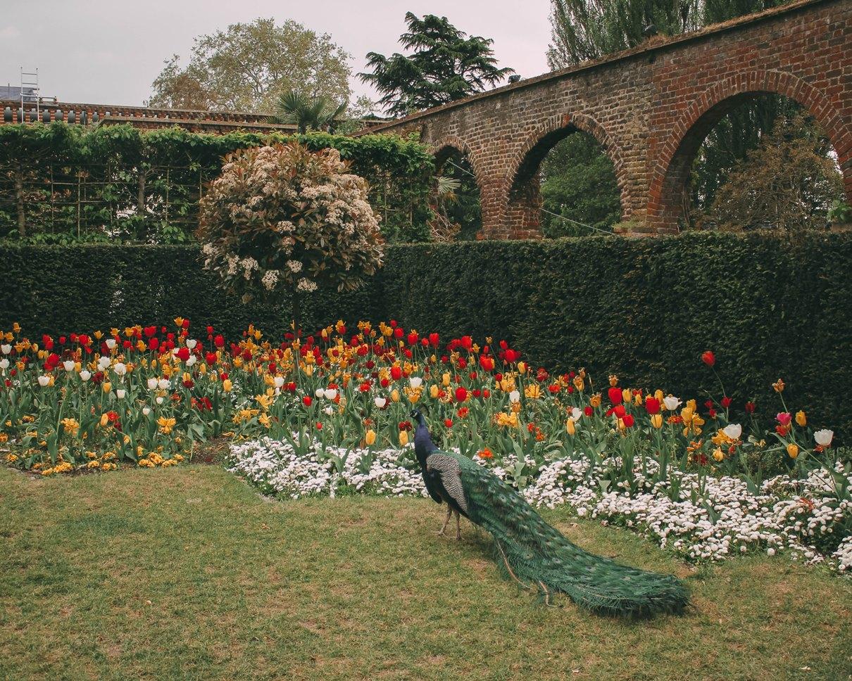 Holland Park, London