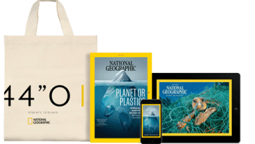 Need a Reusable Bag? A Free Tote For Every Type