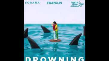 Franklin x Digital Farm Animals x Sorana – Drowning