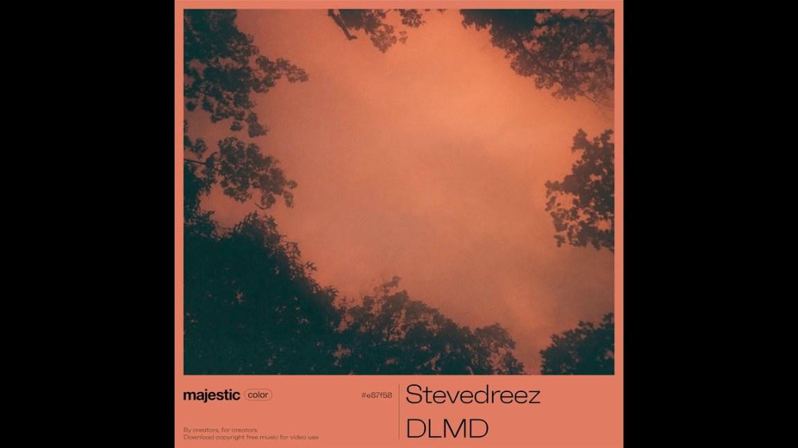 Stevedreez – DLMD