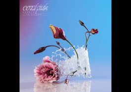 Coral Pink – People I've Known