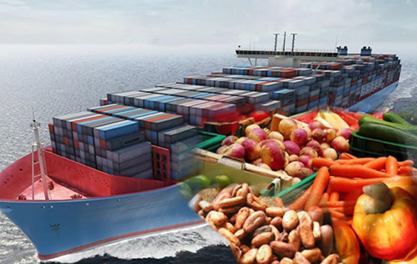 Image result for transportation of south and nigeria fruits on the sea