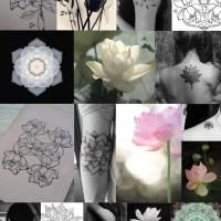 SYMBOLISM. Lotus flower