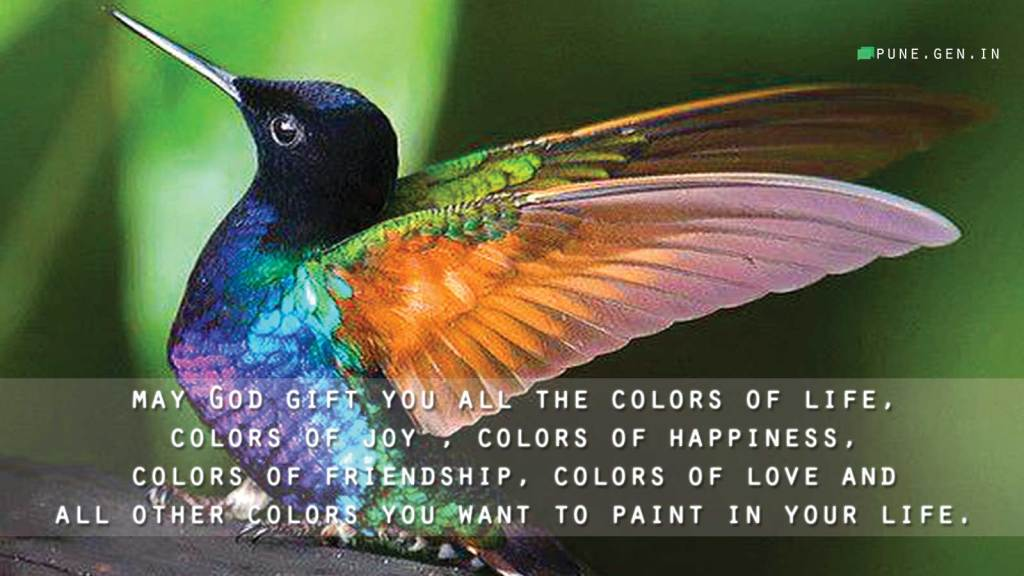 Good Morning Wishes... May God gift you all the colors of life