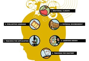 Brain Based Teaching Model - An Overview