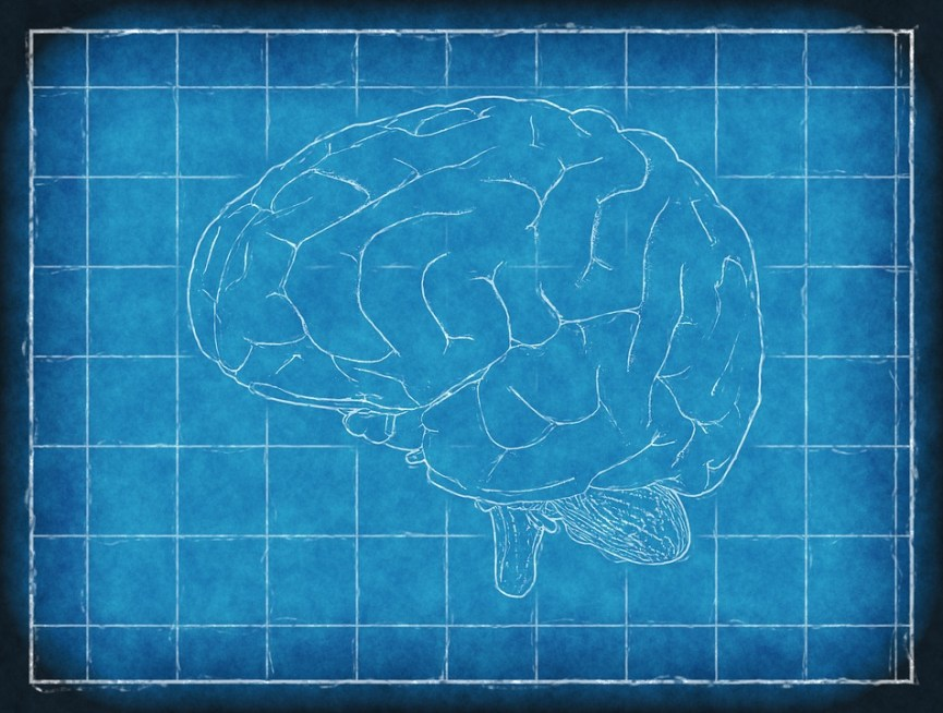 Keeping Brains Active this Winter