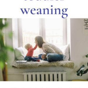 Toddler Weaning: Deciding to Gradually Wean your Toddler & Making it Happen by Punita Rice