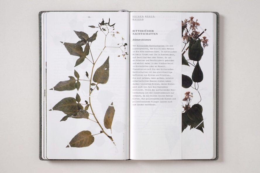 Helmut Völter: Handbuch der wildwachsenden Großstadtpflanzen, Institut für Buchkunst, 2007