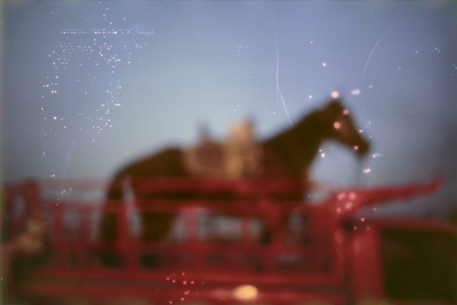 Fotó: <b>Nan Goldin</b>: <i>My horse, Roma, Valley of the Queens, Luxor, Egypt, 2003</i><br> Dye sublimation prints on aluminum<br> 20 x 30 in. (50.8 x 76.2 cm)<br> (24973)<br> Courtesy of the artist and Marian Goodman Gallery<br> © Nan Goldin