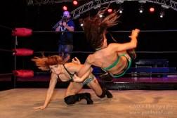 D'arcy vs. Nikki