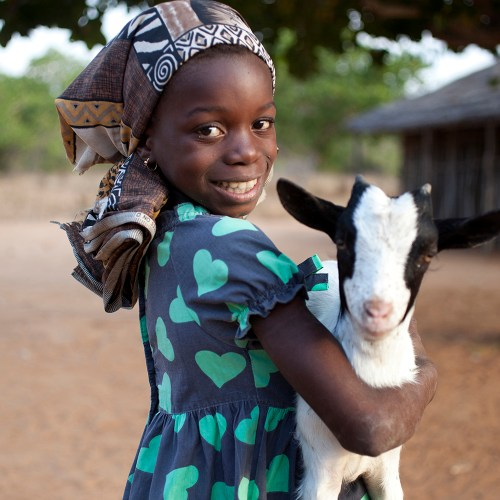 Give Back This Holiday Season. A Gift Guide With Purpose. Oxfam Goat.