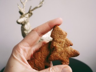 You have to try these gingerbread cookies! The recipe is pretty simple enough. You can make handmade ornaments with them or for the love of god, eat them!