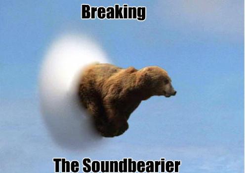 breaking sound bearier, sound barrier, bear puns