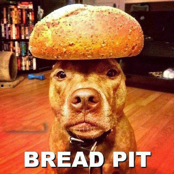 bread pit pun