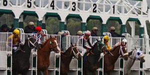 The Off Horse Racing Start