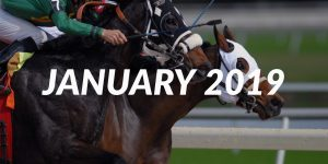 January 2019: Top Horse Racing Tipsters (Tipstrr)
