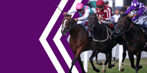 Betdaq Review & Free Bet — The 2nd Largest Betting Exchange