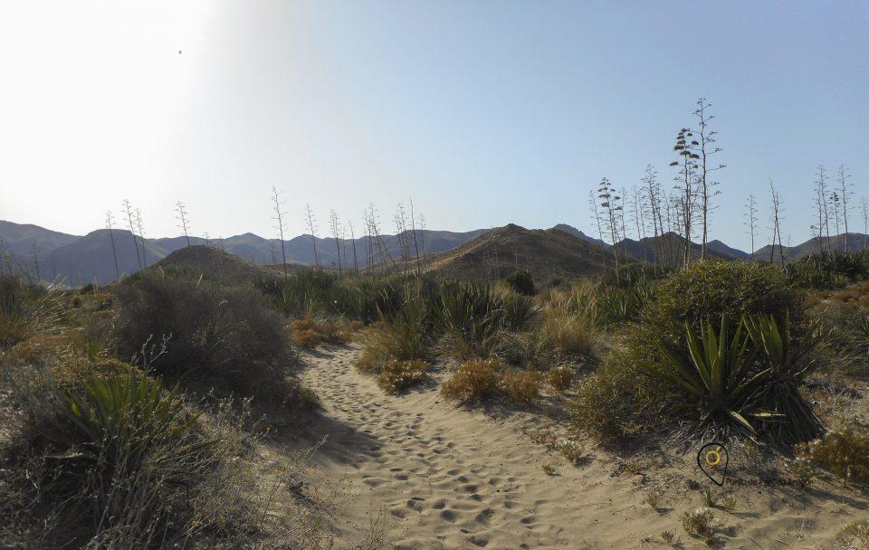 Camino a la Playa de Barronal, Cabo de Gata