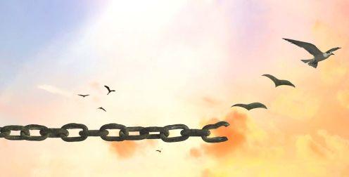 immagine di catena che si spezza e diventa uccello che vola