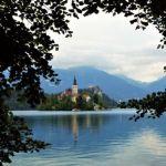 immagine della chiesa nel lago di bled contornato dalle fronde degli alberi