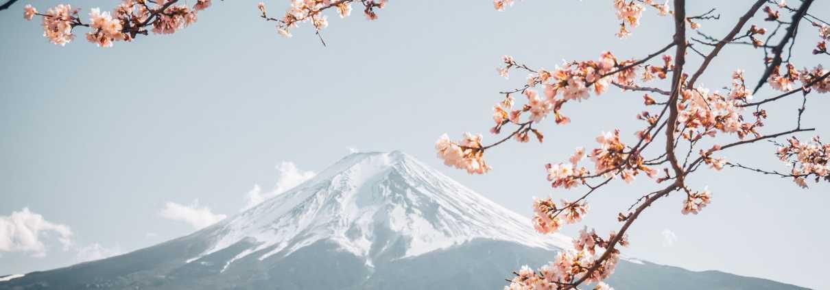 estetica giapponese
