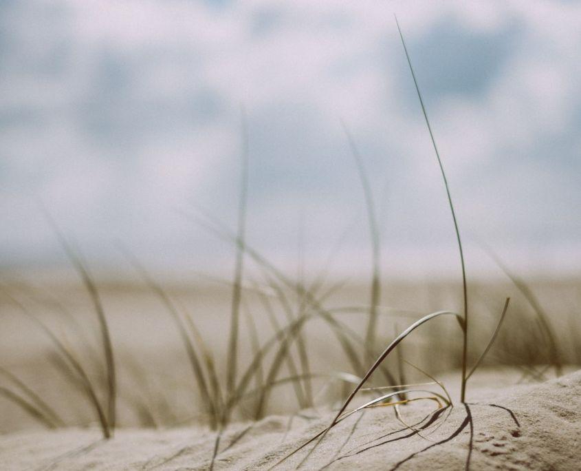 spiagge nella top 10 danimarca
