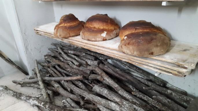 Pane di Altamura DOP Di Gesu