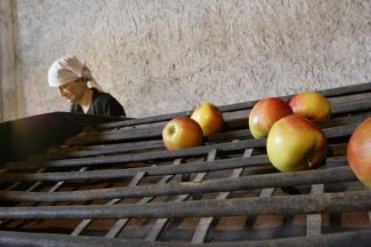 museo-di-frutticoltura-lana-alto-adige