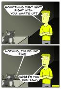 cat-problems