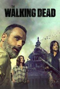 Descargar The Walking Dead Temporada 9