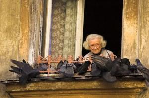 old-lady-feeding-the-birds