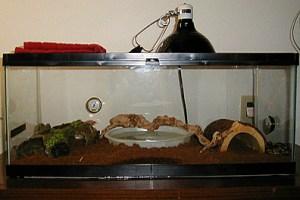 snake-cage