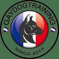 Gaydogtraining